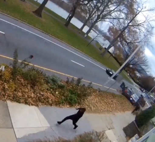 Suspect arrested in dramatic police chase caught on camera in Harrisburg